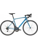 CANNONDALE CAAD Optimo 1 2021